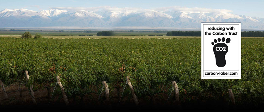 Bodegas Salentein | 1st Argentinian Winery that certifies carbon footprint